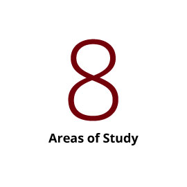Infographic: 8 Areas of Study