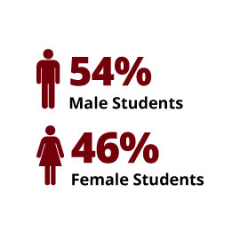 Infographic: 54% Male Students, 46% Female Students