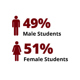 Infographic: Students: 49% male and 51% female